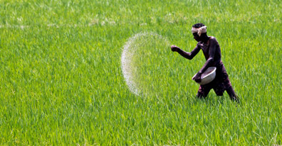 India goverment gives nod to continue urea production from Naptha